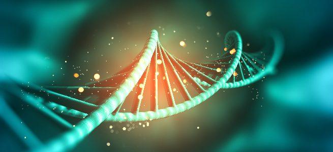 MEN renovó el registro calificado de la Maestría en Bioinformática